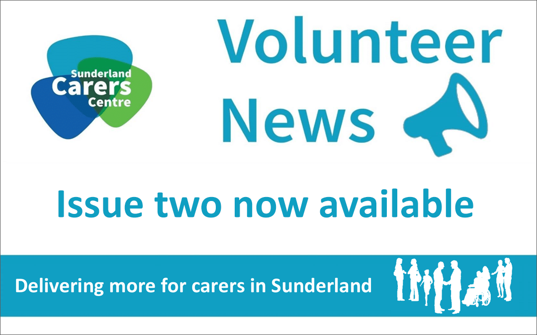 Volunteer Newsletter – Issue 2