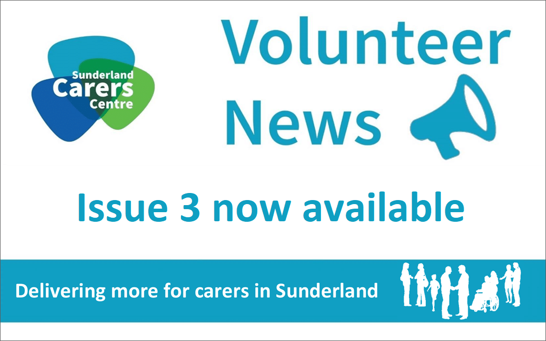 Volunteer Newsletter – Issue 3